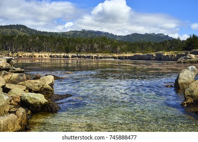 pacific ocean inlet on the California coast near Monterey; its crystal clear waters show algae and small rocks