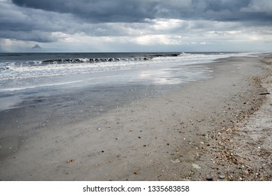 Pacific Ocean and sandy coast with rare shells