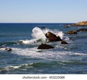 Pacific Ocean Wave