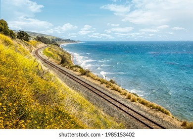Pacific railroad along the coast of California with blooming wildflowers in springtime