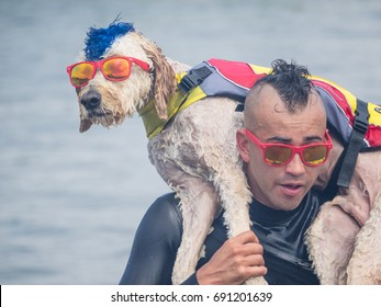 Pacifica, CA/USA - August 5, 2017: The second annual World Dog Surfing Championships brought together the top dog surfers and their humans.