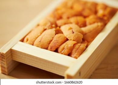 A pack of fresh raw sea urchin