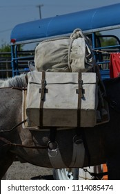 Pack Horse:  Boxed and wrapped equipment for a pack trip.