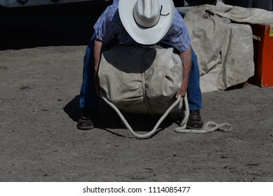 Pack Horse: Outfitter demonstrates tying a pack.