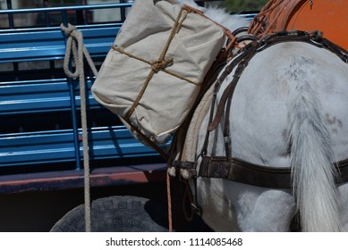 Pack Mule: End view of pack with hitch knot.