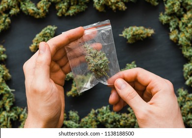 Package cannabis in hand .A lot of marijuana Package with weed and fresh buds of cannabis many weed. Copy spase Copy-space joint fresh green buds of