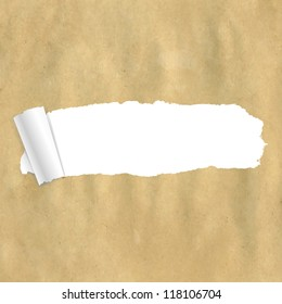 Package Paper Torn
