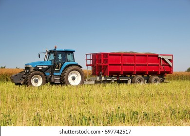 PACOV, CZECH REPUBLIC - August 15, 2015: Trailer fully loaded with oilseed rape for bio fuel attached to blue tractor, hot sunny summer day with blue sky, side perspective, stubble in foreground