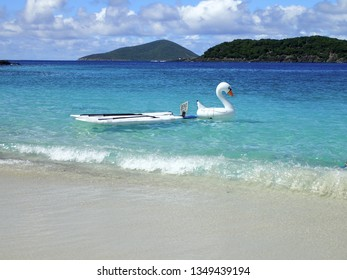 Paddle boards and blow up swan with a rent me sign on them on a sunny day at Coki Beach in St. Thomas, US Virgin Islands.