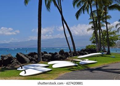 paddle boards waiting for paddlers on Kohala coast, Big Island of Hawaii