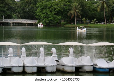 Paddle boats are available for rent at a public park in Bangkok, Thailand.