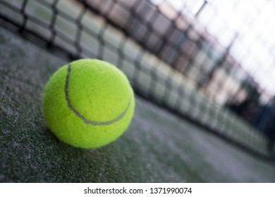 Paddle tennis balls, racket, balls and net, sport objects