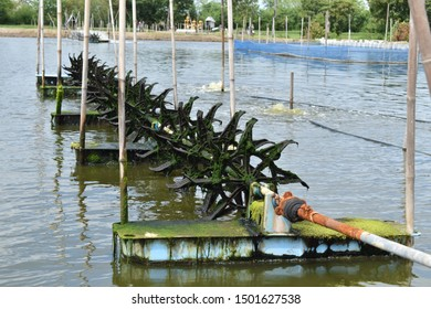 Paddle wheel, aeration system for fish and shrimp farming