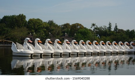 Paddleboats with shape of swans, at Ancol Beach Jakarta Indonesia