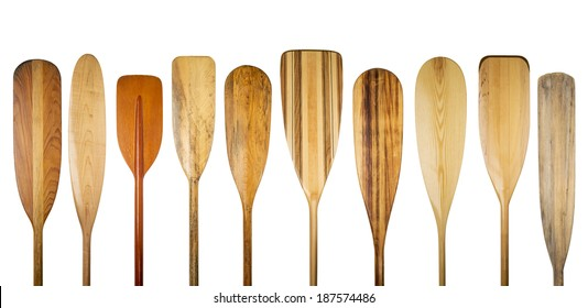 paddling concept - a row of wooden canoe paddles, a variety of styles, shapes and finishes