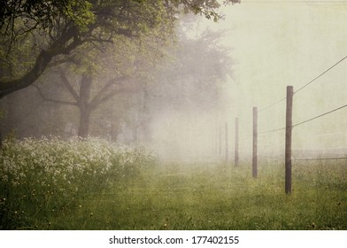 Paddock with early morning fog - Vintage look