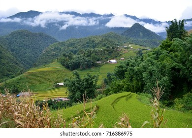 Paddy field and small villages in northern Vietnam.