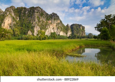 Paddy and limestone mountain at Phitsanulok, Thailand (Noen Ma Prang district)