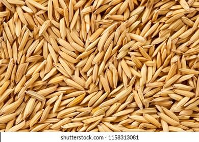 Paddy, raw rice