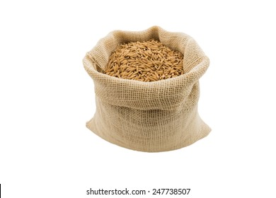 paddy rice in small burlap sack is isolated on white background