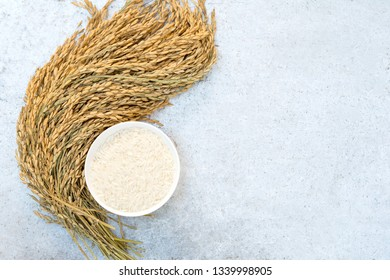 paddy rice with white rice