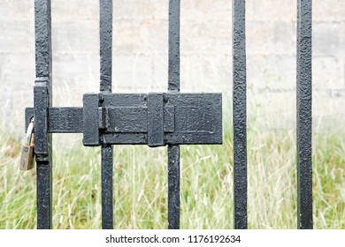 A padlocked metal latch on a black metal grill gate..