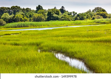 Padnaram Green Grass Salt Water Marsh Dartmouth Massachusetts