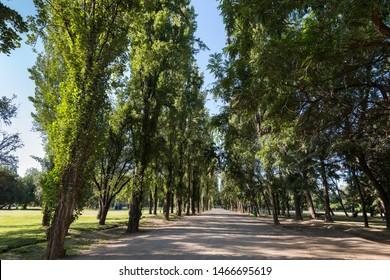 Padre Hurtado Park formerly known as Parque Intercomunal de la Reina at La reina district, Santiago de Chile