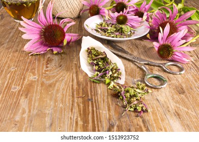 Page on the website Tea drink with Echinacea purpurea (Echinacea purpurea) dried