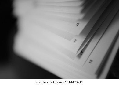 pages in a book black and white
