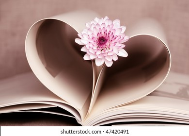 Pages of a book made into a heart shape. Symbolizes a love and romance.
