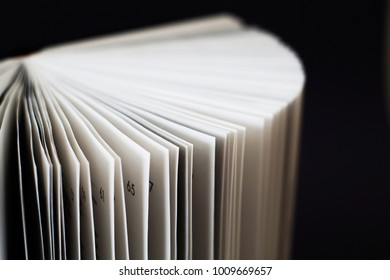 pages numeration, open book