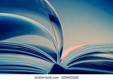 pages of an open book. Blue tonality of the image. Business and finance. Business metaphor.