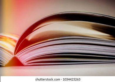 pages of an open book. Business and finance. Business metaphor.