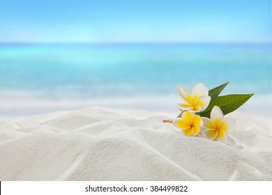 pagoda on sandy beach, Summer concept