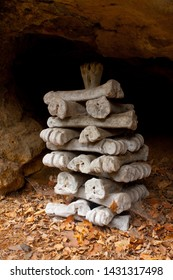 Pagoda shaped stack of arranged old bones in a small cavern under a sandstone abri. Old leaves lie on ground and a dark, very narrow passage continues under the rock beyond. There are cobwebs around.