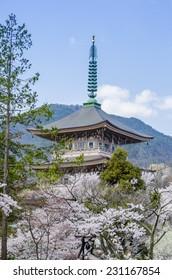Pagoda in Zenkoji temple - Nagano , Japan