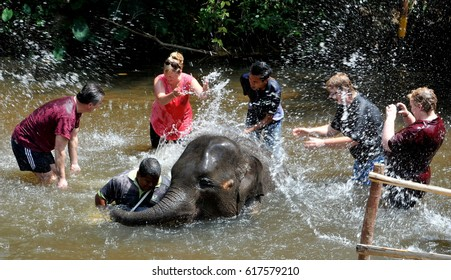 PAHANG, MALAYSIA, APRIL 9, 2017 -- People swimming with the elephant when he visits at national Elephant training center