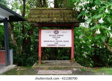 PAHANG, MALAYSIA - FEBRUARY 8 2015 : Tea BOH museum sign at Cameron Highlands, Pahang, Malaysia.