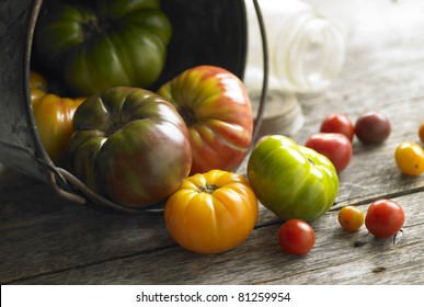 A pail of freshly picked heirloom tomatos with canning jars on rustic barwood background.