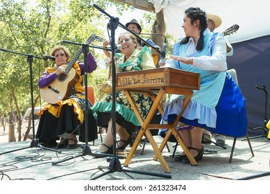 Paine, Chile. Nov 11, 2014. Unidentified folkloric musical group during traditional festival in the Chilean countryside.