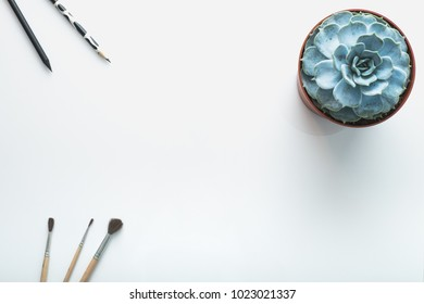 Paint brushes, black pen, pencil and blue succulent Echeveria on white background. Flat lay, top view. Minimalist workplace concept