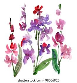 paint orchid flower. handmade watercolour floral design element. watercolor