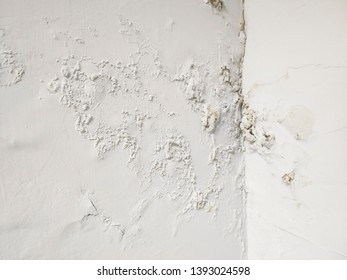 The paint is peeling off.wall mold