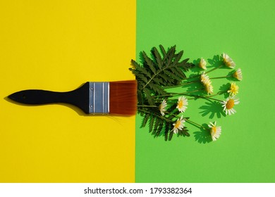 Paintbrush And Summer Daisy Flowes On The Yellow And Green Paper Sheet.
