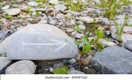 Painted arrow on stone show direction on dry rocks and green plants close to river side