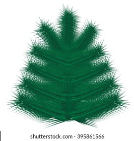 Painted  Christmas tree  Christmas tree, pattern tree Fluffy Christmas tree Fluffy tree on a white background