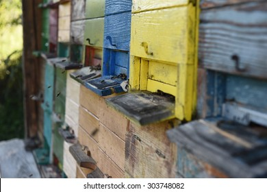 Painted colorful wooden beehive, isolated. Close-up. Honey. Bees. Traditional. Apiary. Beekeeping. Apiology. Farming. Carniolan honey bee. Apis melifera carnica. Slovenia.