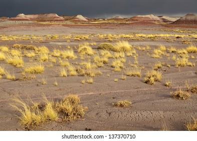 Painted Desert National Park after a storm