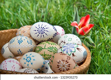 Painted Easter eggs in the garden in the springtime